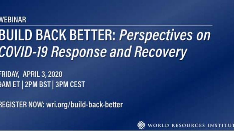 Build Back Better: COVID-19 Response and Recovery