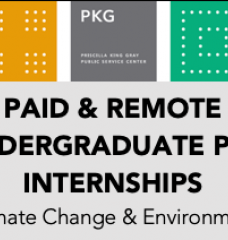 Header: Paid and Remote Undergraduate PKG Internships