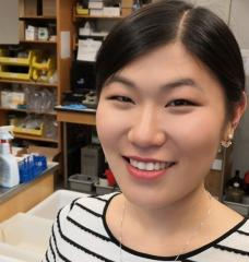 Graduate student Linda Zhong works in Professor Anthony Sinskey's biology lab on an answer for plastic pollution.