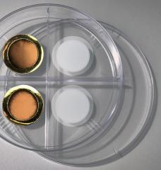 On the right is a porous anodized aluminum oxide membrane. The left side shows the same membrane after coating it with a thin layer of gold, making the membrane conductive for electrochemical gas gating.