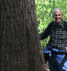 William Moomaw PhD '65 stands next to a large tree while hiking in the woods