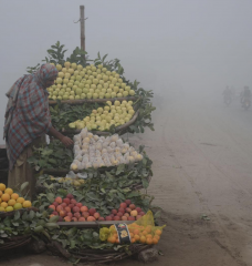 A street vendor stands behind a cart filled with fruit with a cloud of gray smog in the background.