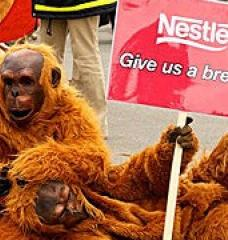 "Two people in orangutan costumes on a sidewalk, one holding a sign reading ""Nestle - Give us a break!"""